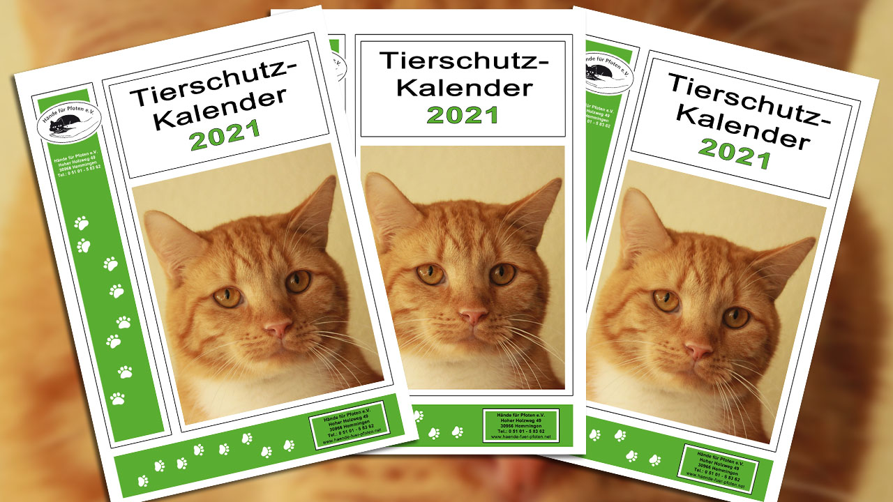 Deckblatt Tierschutz-Kalender 2021